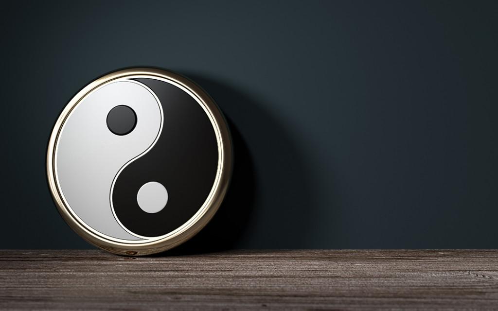 The-Yin-Yang-Technique